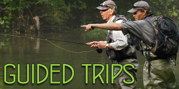TCO Fishing Reports
